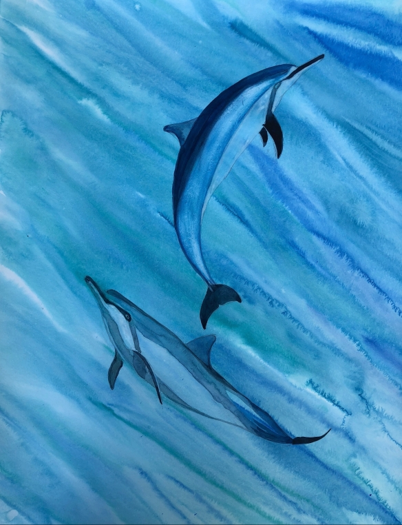 dolphin-dance-e1533785080372.jpg