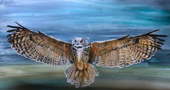 Pueo owl